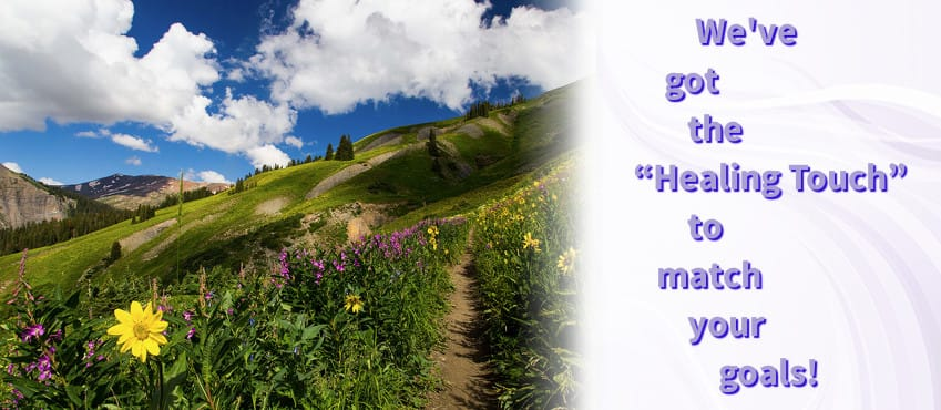Image of serence flower strewn path on mountainside next to 'We've got the 'Healing Touch' to match your goals' slogan.
